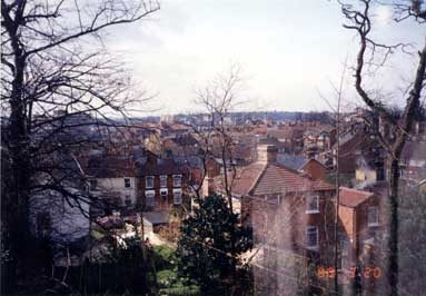 Photo of the view from my bed room window, in our second Ipswich home. The house was on the edge of a slight hill so the view is terrific. Photographed 1988